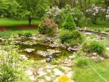 Pond_5_13_07.jpg