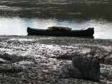 Mud and ice, scarred banks