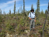 Hike in boreal/tiaga forest