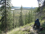 Overlooking Wolverine River