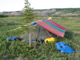 Hot buggy camp, ugh!