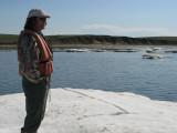 Taking bug-free break on ice floe