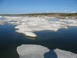 This day the ice was dense, moving with tide-current
