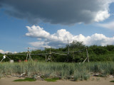 Fish drying racks, native seasonal camp