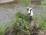 Tracking isn't easy without a gravel bar