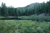 Lily Lake California