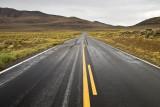 Wet long road