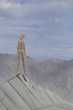 Burning Man version 2