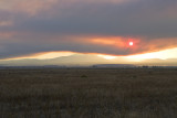 Forest Fire Smoke near Madres Oregon