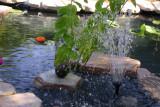 closeup of the fountain