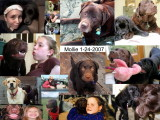 Remembering Mollie 1-24-2007