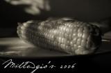 The-Corn.jpg