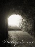 Tunnel-of-Light.jpg