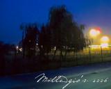 Morning-lights.jpg