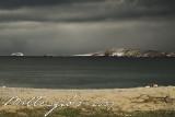 Beach-landscape.jpg