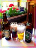 Beer Extravaganza, Vienna, Austria