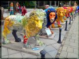 Lions Gallore, Munchen, Germany