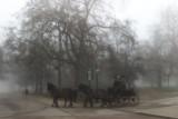 Hyde Park Fog