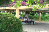 Schoolboys taking a break in the park.