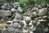 Notice the lion carving in the stone wall.