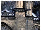 dom_cathedral4.jpg