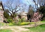 Spring at C.W. Post