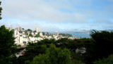 Atop Telegraph Hill