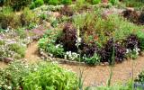 Garden at the Hermitage