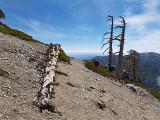 Mt Baldy (May 2007)