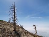 Cucamonga Peak (May 2007)