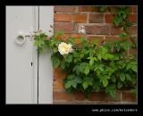 Croft Castle Walled Gardens #04