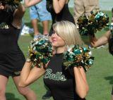 2006 University of South Florida Football Season
