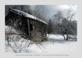 Vosges, near Gerardmer 4