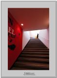 Paris modern art museum 6