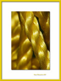 Yellow seesaw's rope, Bernay