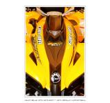 Salon de la Moto 2007 - 5