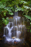'Rainforest' Waterfall 20060416