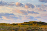 Mustang Island 45606