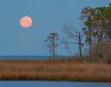 Dauphin Island Moonset 20070303