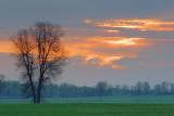 Daybreak 20070510