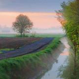 Field Ditch At Dawn 60214