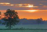 Sunrise Clouds 60831