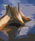 River Stump 62241 Art2