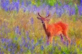 Deer Amid Wildflowers 62541 Art
