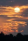 Clouds & Sun 64555