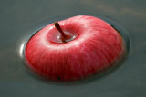 Floating Apple 20070926