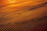 Sunrise Ripples In The Sand 69219
