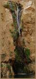 02413 - Freeze waterfall / Ein-Ovdat - Israel