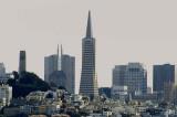 05215 - Coit tower and Tramsamerica building, San Francisco / (from) Alcatraz island - CA - USA