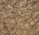 11682 - The Dead Vlei ground / Sossussvlei - Namibia
